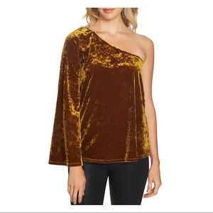 NWT 1. STATE Brown Crushed Velvet One Shoulder Top